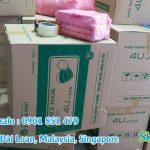 Gửi khẩu trang y tế đi Đài Loan, Singapore, Malaysia
